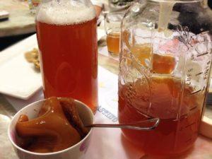О полезных свойствах чайного гриба и уходе за ним