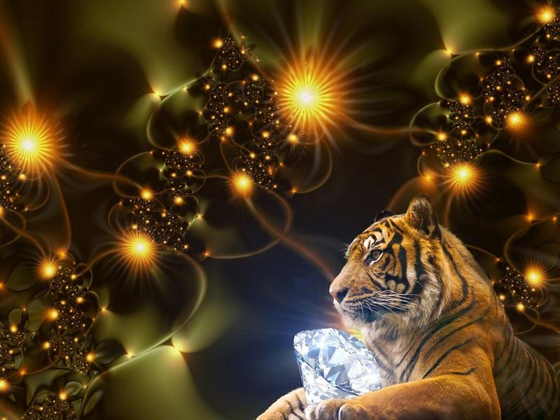 Здоровье людей, родившихся в год Тигра